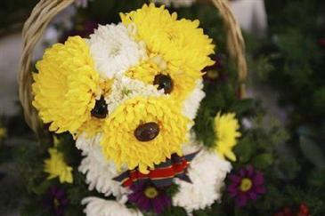 Dans La Série Bouquet De Fleurs Original Toluna