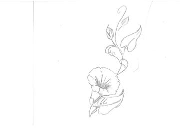 Voici mon futur tatouage comment le trouvez vous toluna - Comment eradiquer le liseron ...