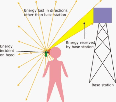 harmful effects in cellphone usage The dramatic worldwide increase in use of cellular telephones has prompted concerns regarding potential harmful effects of exposure to radiofrequency-modulated electromagnetic fields (rf-emfs.