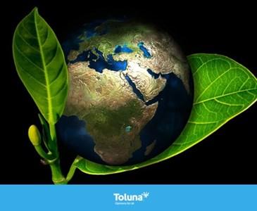 Kepentingan Alam Sekitar Yang Hijau Toluna