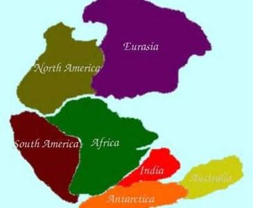 Quanti continenti ha la terra la cosa non chiara e for Deputati e senatori quanti sono