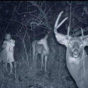 paranormal vs supernatural