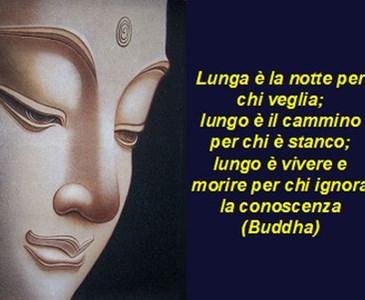 Le Piu Belle Frasi Di Buddha Toluna