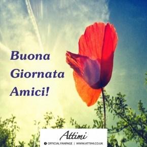 Buongiorno cari amici ,e buona giornata !!! | Toluna