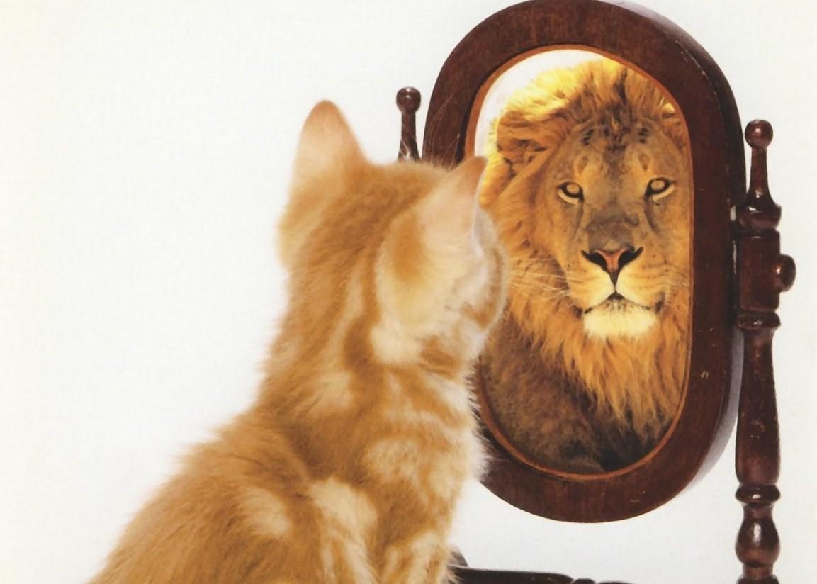 Статус о себе сильной и уверенной в себе