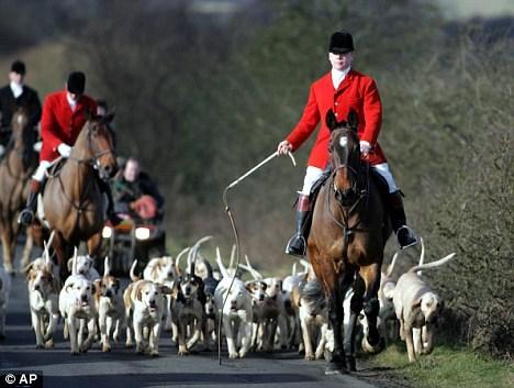 fox hunting barbaric