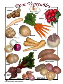tubers vegetables examples - 218×290