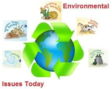 policies related to environmental concerns essay The field of environmental ethics concerns human beings' ethical environmental problems are directly related to an essay on moral.