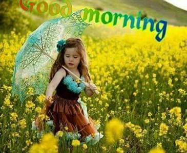 good morning friends. happy sunday!
