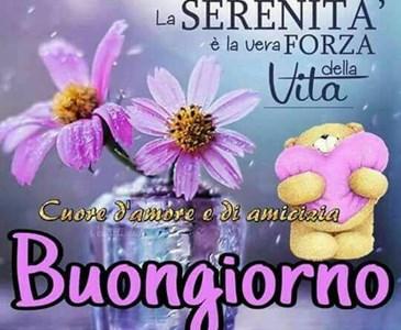 Buon Giorno E Tanta Serenita A Tutti Toluna