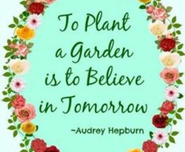 Do You Believe That To Plant A Garden Is To Believe In Tomorrow Toluna