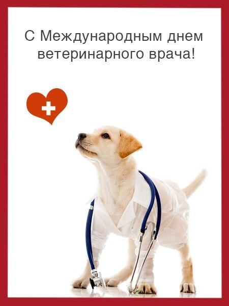 Поздравление с днем ветеринарного работника в картинках 90