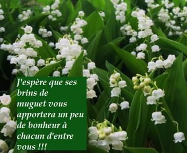 Pensez Vous Que La Tradition Doffrir Du Muguet Le 1er Mai