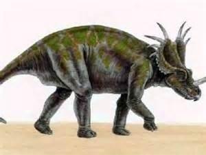 Dinosaurios Herbivoros Toluna Conoce qué comían los dinosaurios herbívoros. dinosaurios herbivoros toluna