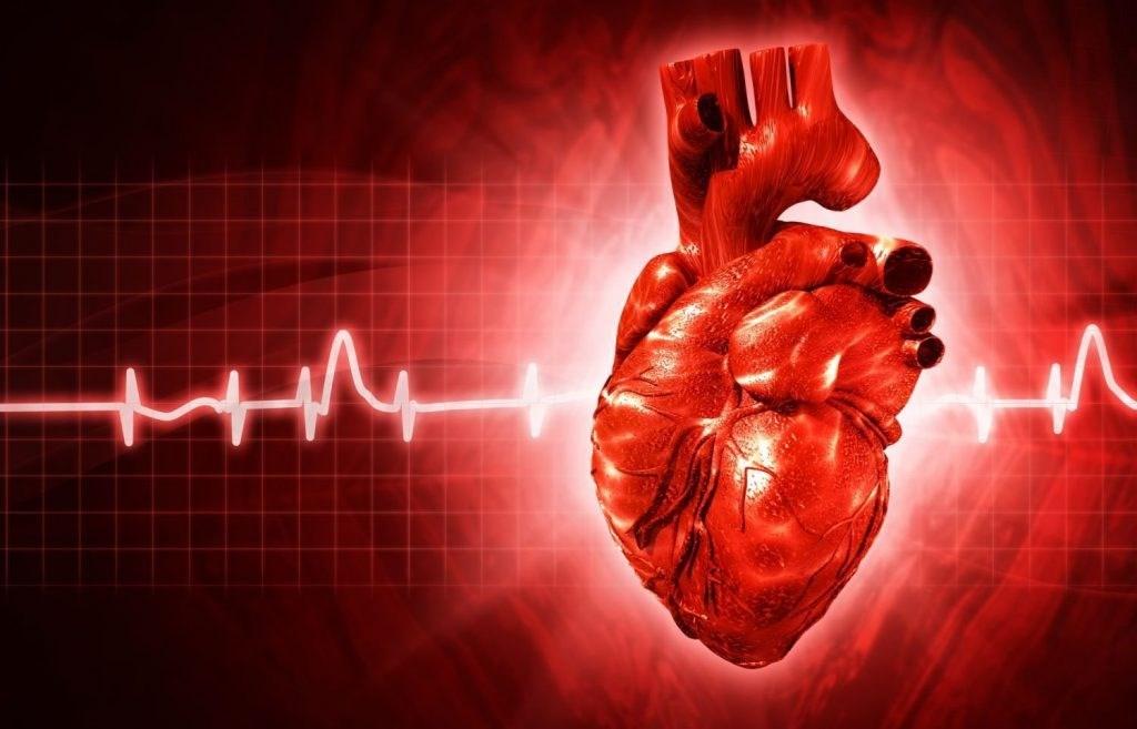 почему в присутствии врача сильно бьется сердце термогольфы Отдельно для