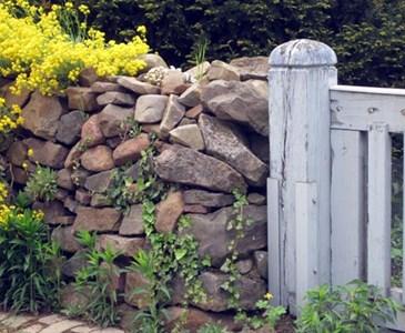 Zaun Mauer Hecke Toluna