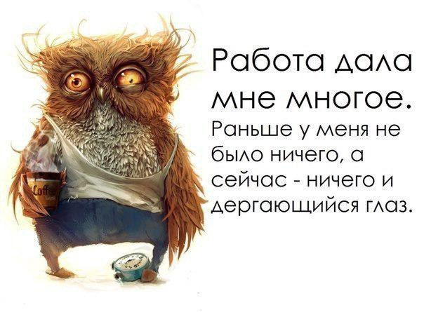 https://ru.toluna.com/dpolls_images/2017/09/09/cbb73a45-d1d3-4ab6-ad3c-23c8c8f57b67.jpg