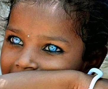 Die Schönsten Augen Der Welt Toluna