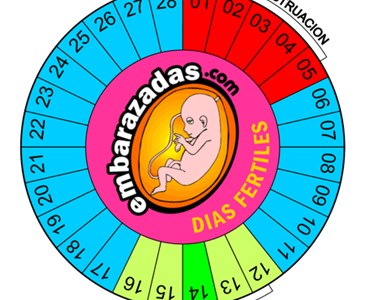 Dias Fertiles Mujer Calendario.Calculadora De Dias Fertiles Y Ovulacion Toluna