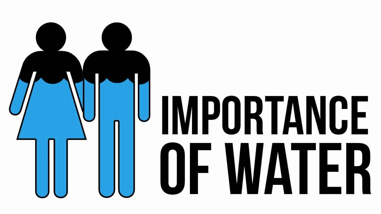 dehydration the importance of water How dehydration affects mental function we've got to take in fluid imagine, as you think about how important water is to your own daily functioning.