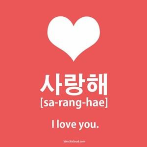 Lebih Suka Mana Kata Aku Cinta Kamu Bahasa Jepang Aishiteru Vs Korea Saranghae Toluna