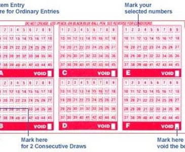 If you win the SGD$9 million Toto draw, will you quit your job? | Toluna