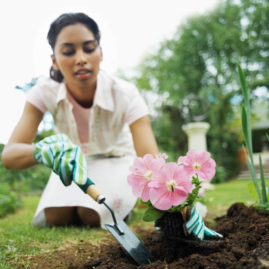 Сонник трактует растения — как предвестник утомительных дел, заниматься которыми вам будет в радость.