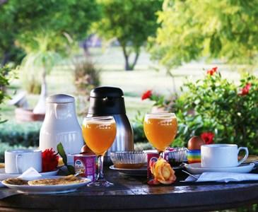 Bonjour toute le monde avec ce bon petit déjeuner dans le jardin ...