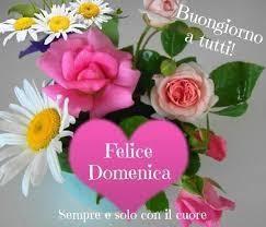 Buona Domenica E Buona Giornata Di Sole A Tutti Toluna