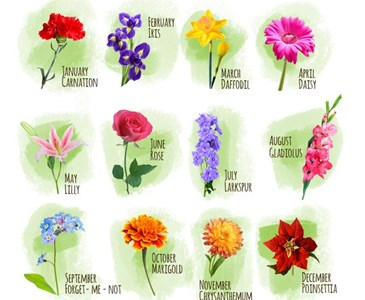 What's your birth month flower? Jan-June( part one)