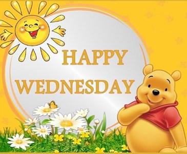 Happy Wednesday .   Toluna