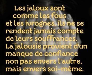 La Jalousie Est Un Vilain Défaut Mais Pas Les Pruneaux