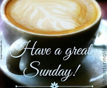 Have A Great Sunday Toluna