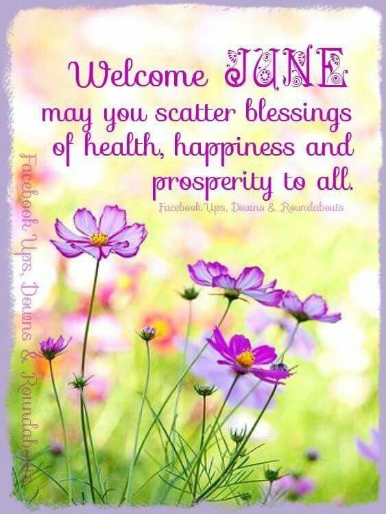 Welcome June Toluna
