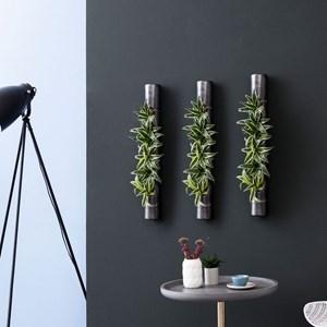 Pflanzen An Der Wand Aufhängen Toluna