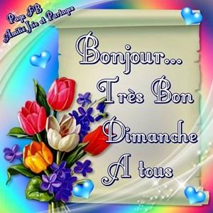 Bonjour Très Bon Dimanche à Tous Bisous Toluna