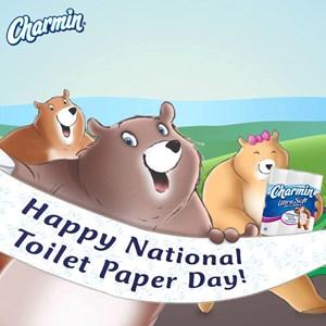 National Toilet Paper Day   Toluna