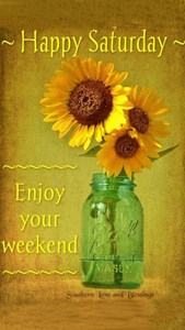 Good Morning To All And Enjoy Your Saturday Toluna