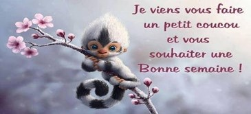 Hello ! je vous souhaite une Bonne semaine a Tous et Toutes   Toluna