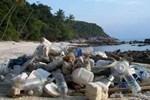 Töltse le a házasságot randevú nélkül al Indonézia társkereső weboldalak ingyen halak