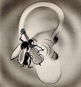 Les oreilles qui sifflent (Normandie) | Toluna
